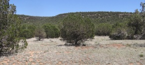 Gently Sloping Lot 2 SRR with Cliff Backdrop