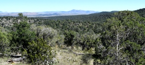 Lot 264 Sierra Verde Ranch